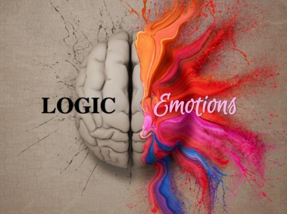 logic brain.jpg